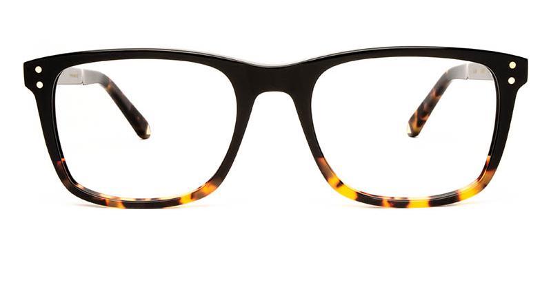 Alexis Amor Remi frames in Gloss Black + Havana